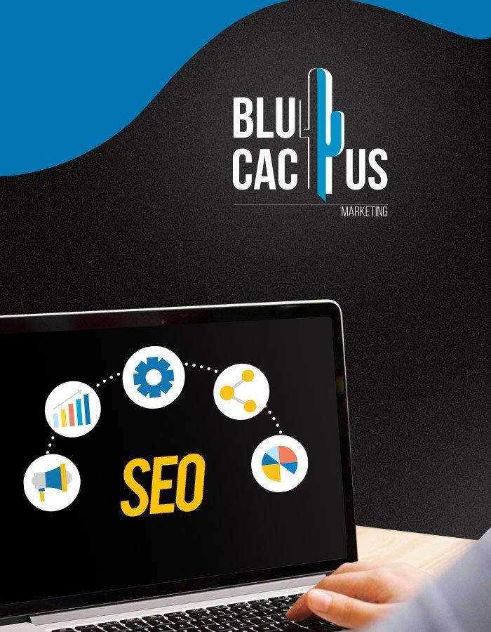 BluCactus SEO services for Inbound Marketing