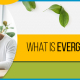 BluCactus - What is Evergreen Content? - title