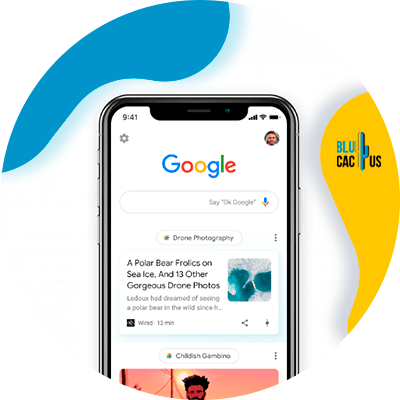 BluCactus - What is and how to position your website in Google Discover? - important data
