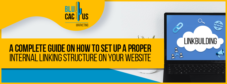 Blucactus-A-complete-guide-on-how-to-set-up-a-proper-internal-linking-structure-on-your-website-cover-page