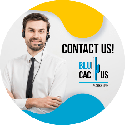 BluCactus - common SEO mistakes - Contact us
