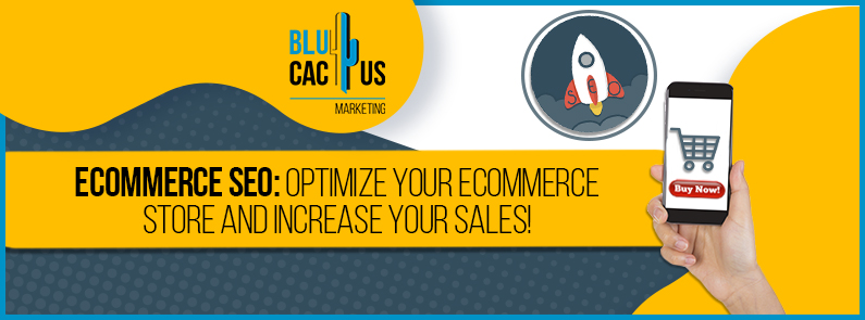 Blucactus-Ecommerce-SEO-optimize-your-ecommerce-store-and-increase-your-sales-cover-page