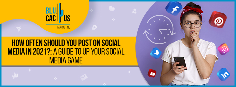 BluCactus - how often should you post on social media - title