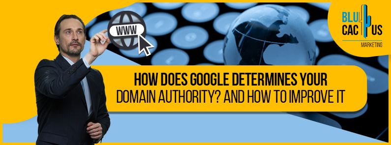 Blucactus-How-does-Google-determines-your-domain-authority-and-how-to-improve-it-cover-page