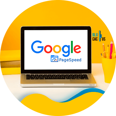 BluCactus - Google Fix