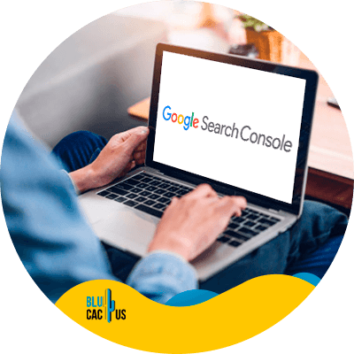 BluCactus - common SEO mistakes - Google Search Console