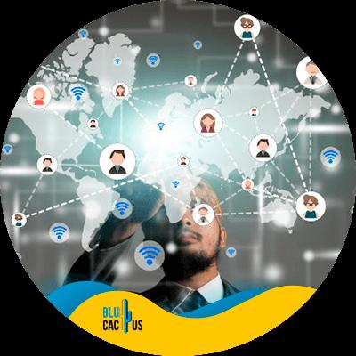 BluCactus -Networking