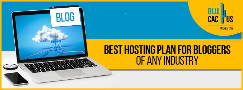 BluCactus - best hosting plan for bloggers - title