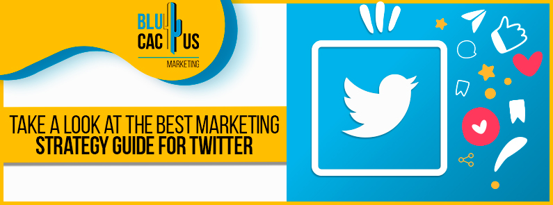 Blucactus-Take-a-look-at-the-best-marketing-strategy-guide-for-twitter-cover-page
