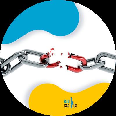 Blucactus - Check for broken links