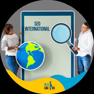 BluCactus - Integrate local and international SEO