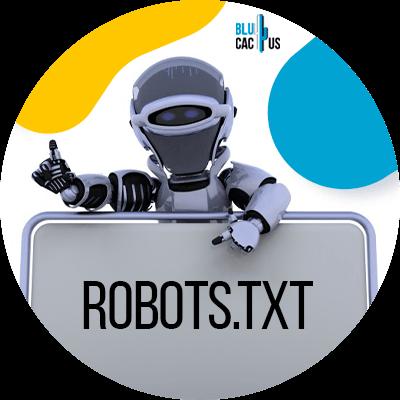 Blucactus - Create robots.txt file - A robot