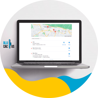 BluCactus - Manage your citations - A laptop