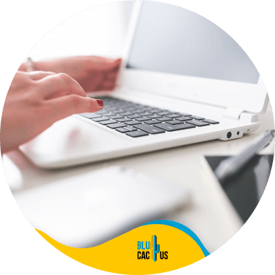 Blucactus - Start a blog - A person using a laptop