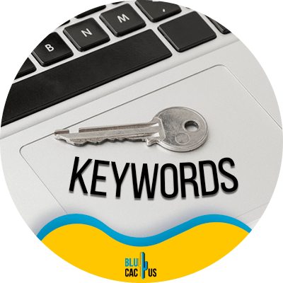 Blucactus - Optimize your posts with keywords