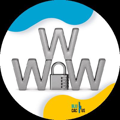 Blucactus - Secure your website