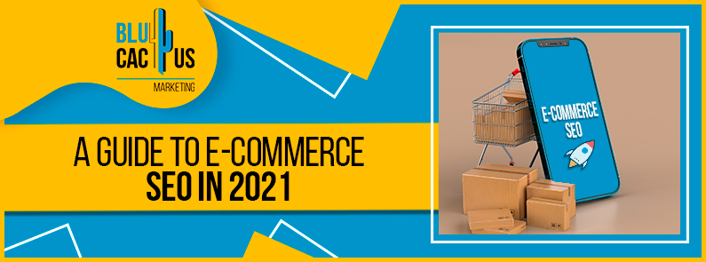 Blucactus-A-Guide-To-E-Commerce-SEO-In-2021-cover-page
