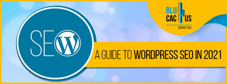 Blucactus - A Guide To WordPress SEO In 2021 cover page