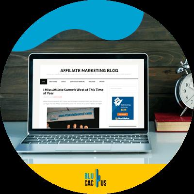 Blucactus - Best Affiliate Marketing Blogs To Read - AffiliateTip