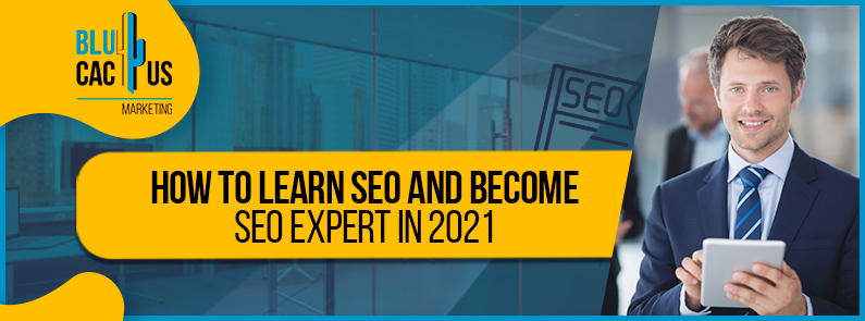 Blucactus - How to learn SEO and become SEO expert in 2021 banner