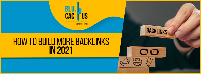 Blucactus - How to build more backlinks in 2021 banner