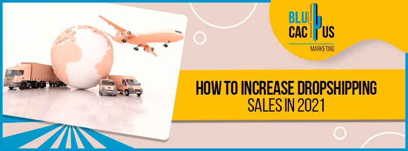Blucactus - how to increase dropshipping sales in 2021 banner