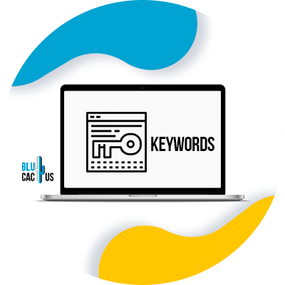 Blucactus - keyword research is the key
