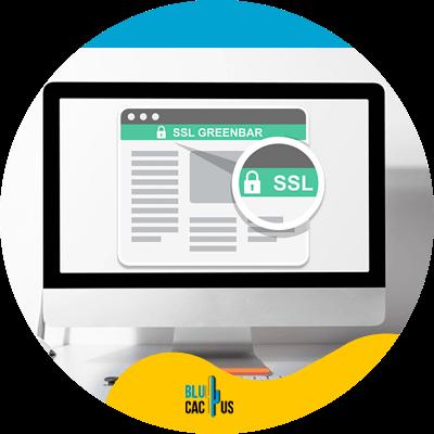 BluCactus - SSL certificate