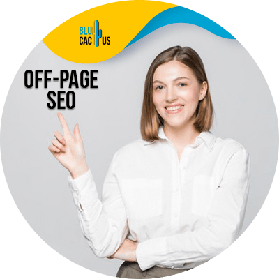 Blucactus - off page seo