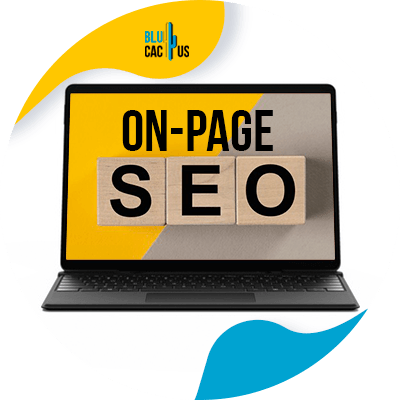 Blucactus - what are the different types of seo - on page seo