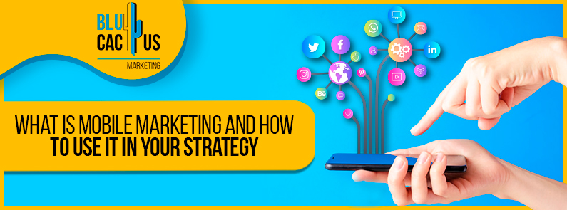 Blucactus-What-is-mobile-marketing-and-how-to-use-it-in-your-strategy-cover-page