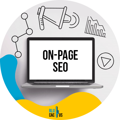 Blucactus - what is on page SEO