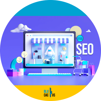 Blucactus-Why-SEO-is-important-for-your-e-commerce-website