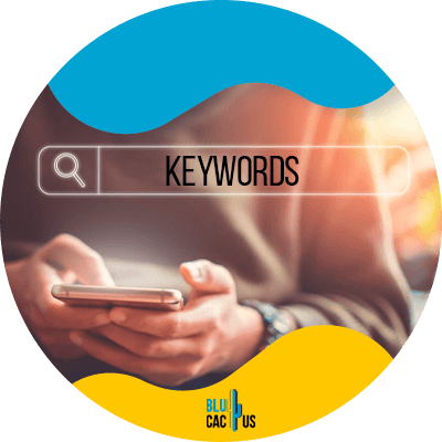 Blucactus - optimize your keywords