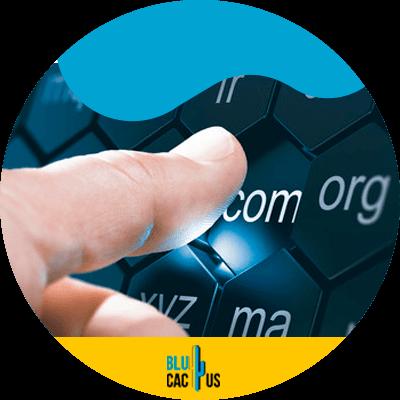 Blucactus - get a domain name
