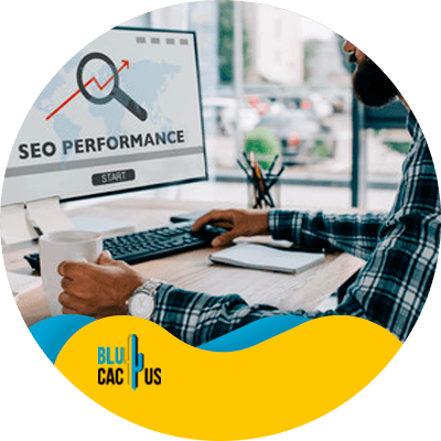 Blucactus - what is seo and why you should care about it