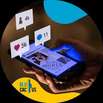 Blucactus-13-Analyze-the-metrics-of-social-profiles - 15 content ideas for fashion brands