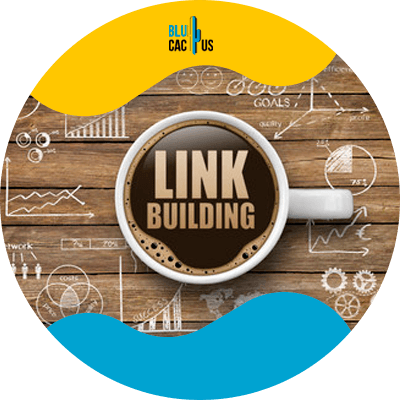Blucactus - link building - SEO guide for Hotel and Restaurants Owners