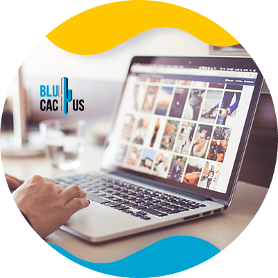 Blucactus-Be-generous-with-images - seo for fashion industry