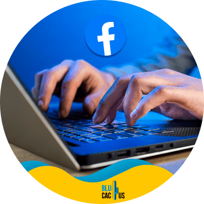 Blucactus - breakdown - A complete Step-wise guide to becoming a Facebook Ads Manager in 2021