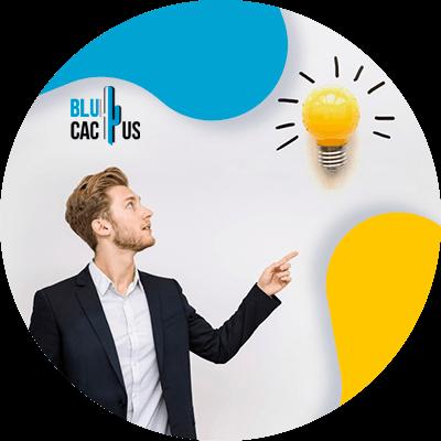 Blucactus-Idea-and-concept