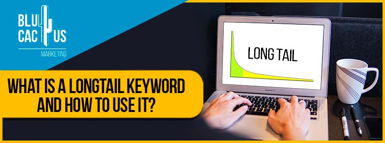 BluCactus - long-tail keyword - banner