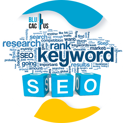 Blucactus-What-page-should-rank-higher-for-those-keywords - seo for fashion industry