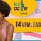 Blucactus - 14 viral fashion campaigns