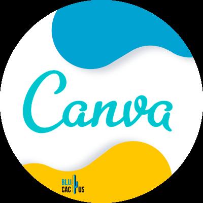 Blucactus-5-canva - 11 blogging skills that every blogger requires