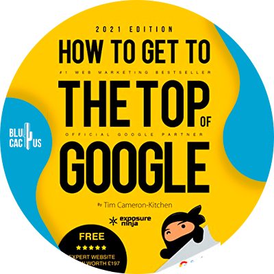 Blucactus-6-How-To-Get-To-The-Top-Of-Google-in-2021