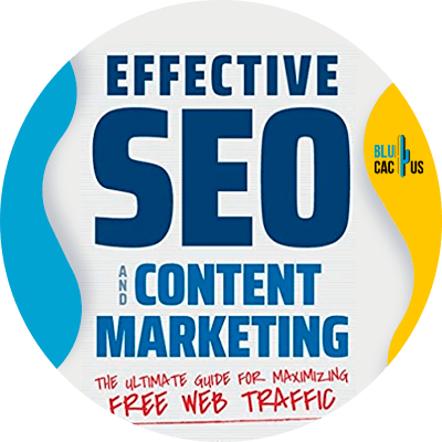 Blucactus-9-Effective-SEO-and-Content-Marketing
