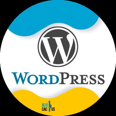 Blucactus-9-WordPress