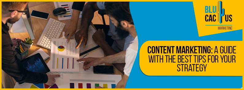 BluCactus - guide of Content marketing
