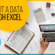BluCactus - How to carry out a data analysis through Excel
